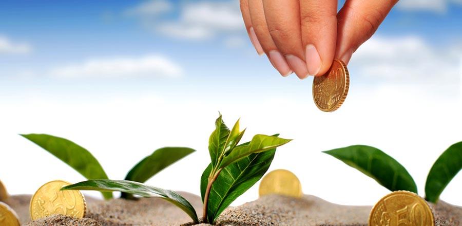 E-2 Visa: The Investment and Enterprise